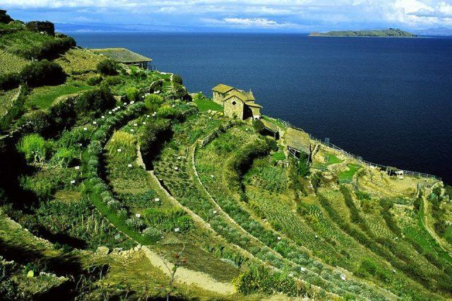 Agricultura en terrazas para la siembra